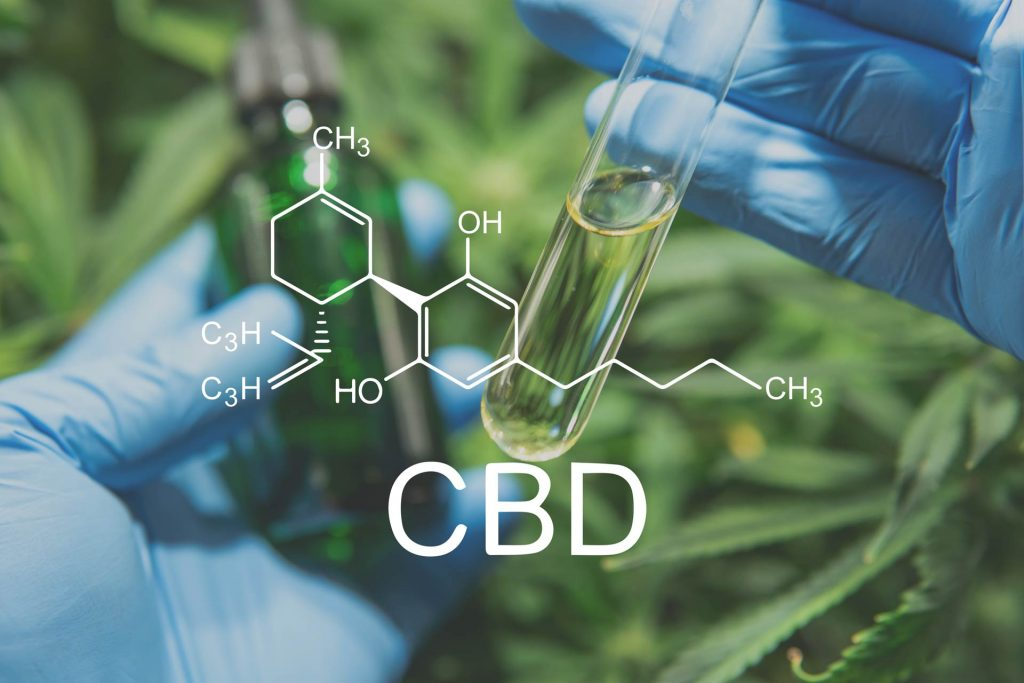 cbd for beginners blog